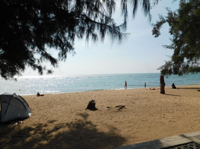 clean-beach-dongtan